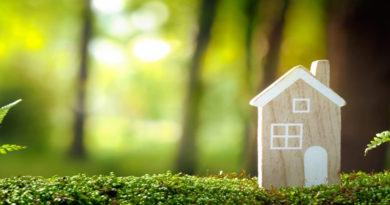 Eco House 19-02